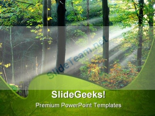 Beams Of Light Through Trees Nature PowerPoint Templates And - nature powerpoint template