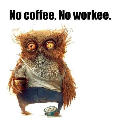 No coffee, No workee.  #owls #lol