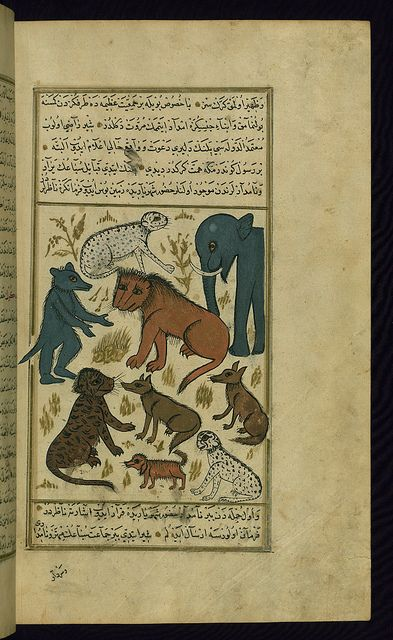 Turkish version of the Wonders of creation, The lion king surrounded by his subjects, Walters Manuscript W.659, fol. 267b by Walters Art Museum Illuminated Manuscripts, via Flickr