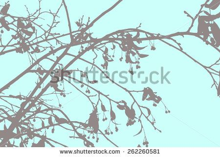 leaves vector - Google Search