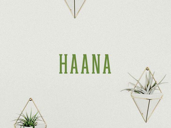 Free Haana Slab Serif Font