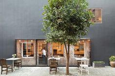 新舊結合,中庭使用,還有一棵樹