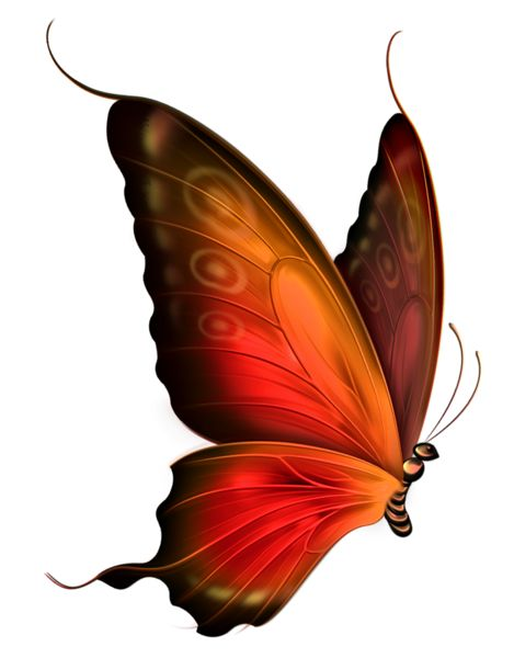 Red and Brown Transparent Butterfly Clipart: