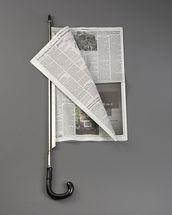 Newspaper Holder Cane