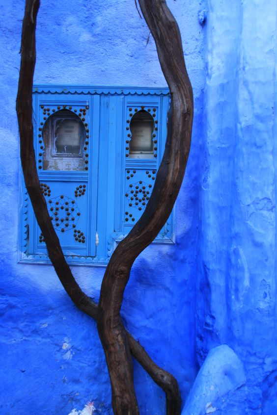even electricity meters are covered beautifully (Chefchaouen, Morocco)