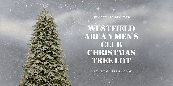 Westfield Area Y Men S Club Christmas Tree Lot Open For Business Christmas Tree Lots Westfield Christmas Tree