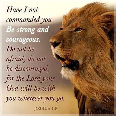 Be a lion!