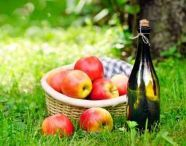 MeinBioPortal - Bio Apfel- und Birnensaft