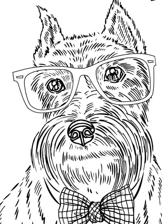 free dog coloring pages for adults FREE Printable
