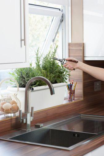 #Gardening Tips: Window Box Planters - Renter Resources: Windowbox, Kitchen Herb Garden, Kitchen Window, Gardening Ideas, Indoor Garden, Window Herb Garden