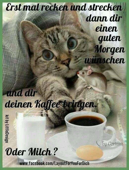 Pin Von Christa Hundt Auf Guten Morgen Guten Morgen Lustig