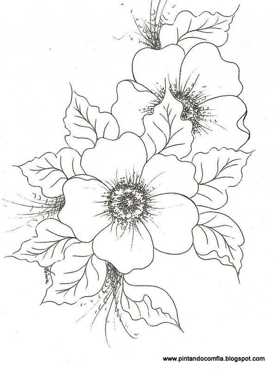 different flower drawings pictures to pin on pinterest pinsdaddy. Black Bedroom Furniture Sets. Home Design Ideas