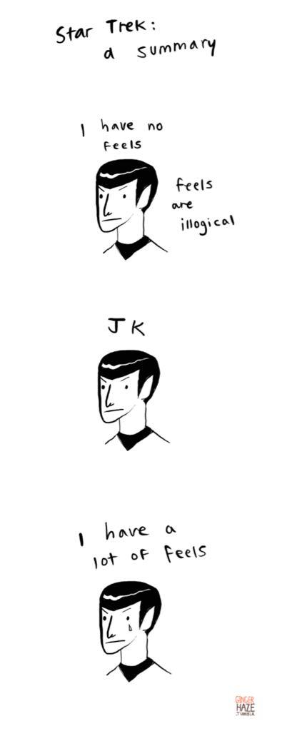 Star Trek: a summary, by Ginger Haze