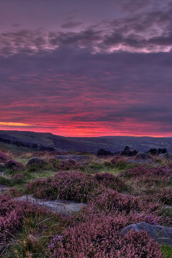 Ilkley Moor is part of the moorland which stretches between Ilkley and Keighley in West Yorkshire