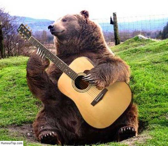 Image comique incroyable d'un énorme ours qui joue de la guitare