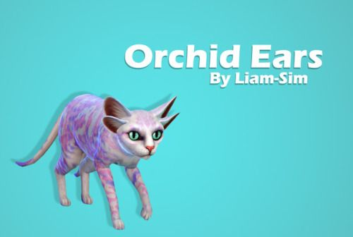 You Loved It So I Made It Orchid Ears From The Most Beautiful Sixam S Flower Download Sfs No Ad Fly Con Imagenes Sims 4 Sims The Sims