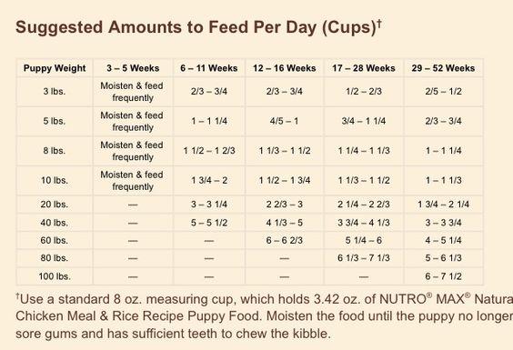 Nutro Puppy Feeding Chart Puppy Feeding Guide Puppy Feeding