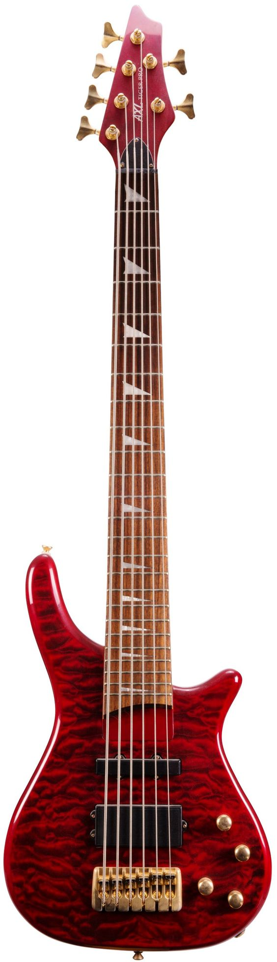 AXL Tiger pro 6 string bass
