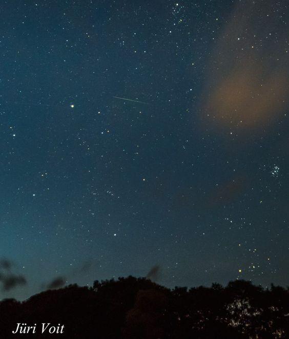Una perseida, la constelación de Tauro y las Pléyades desde Estonia – El Universo Hoy