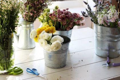 alegerea florilor