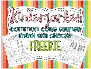 Common Core SUPER FREEBIE...oh yeah!!!22 aligned math skill checks!
