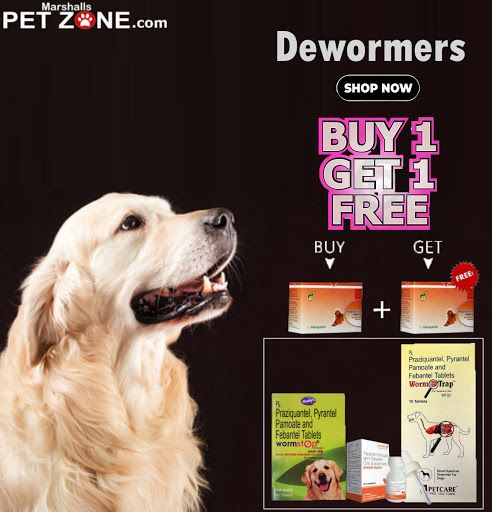 Buy 1 Get 1 Free On Dewormers Worms Are So Common In Dogs Cats For All Dog Breeds Cats Preventive Efficient Medicine F Deworming Dogs Dog Cat Dogs