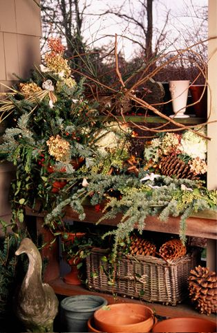 natural elements to decorate with for the holidays