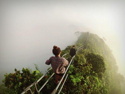 Imagem de adventure, nature, and travel
