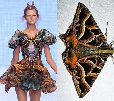 "Love this!  from Alexander McQueen's 2010 Spring/Summer runway show, ""Plato's Atlantis."