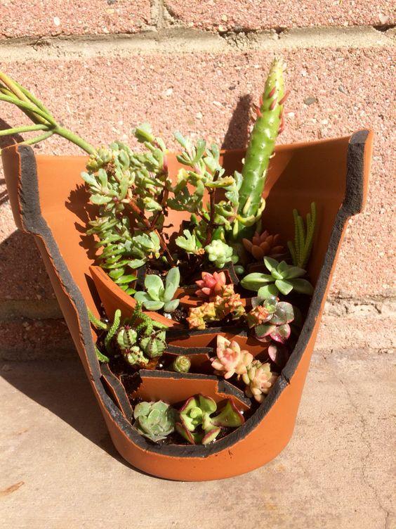 Recycl broken pots