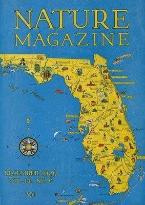 Más De Ideas Increíbles Sobre Detailed Map Of Florida En - Detailed map of florida