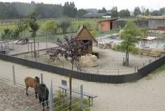 Neumarkt: Zoo