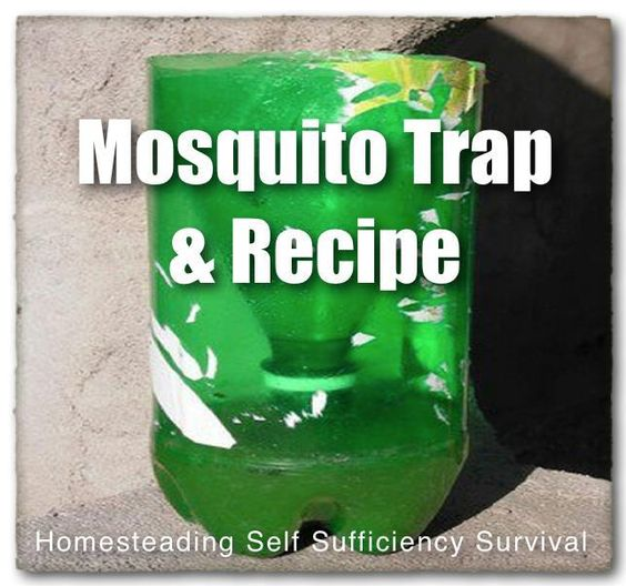 bottles and materials mosquito traps Shop from the world's largest selection and best deals for trapping supplies  food anti mosquito killer  3 bottles hide tanning formula traps trapping.