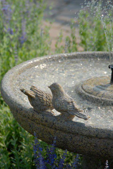 Fontes de Jardim                                                                                                                                                     Mais