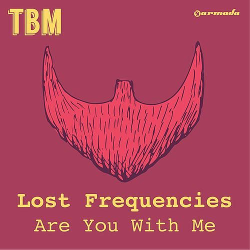 Lost Frequencies – Are You with Me acapella