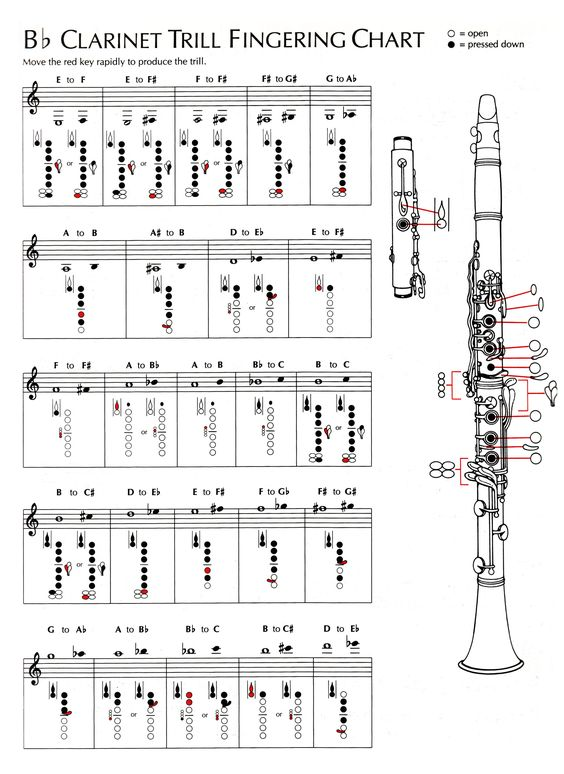 Image Result For Clarinet Fingering Chart | Gee Musicals