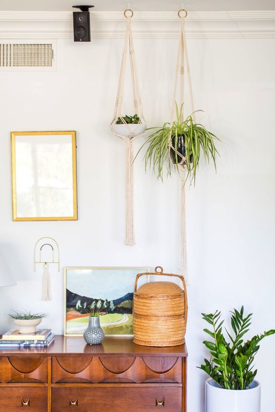 hanging plants in the bedroom