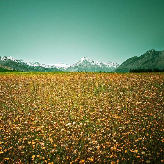 Fotografia: como tirar fotos de paisagens - TecMundo