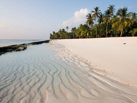 Cát trắng và những rặng dừa thơ mộng bên bãi biển Long Set