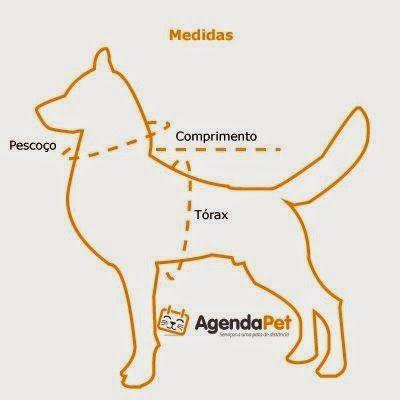 Eu Amo Artesanato: Roupas para cães