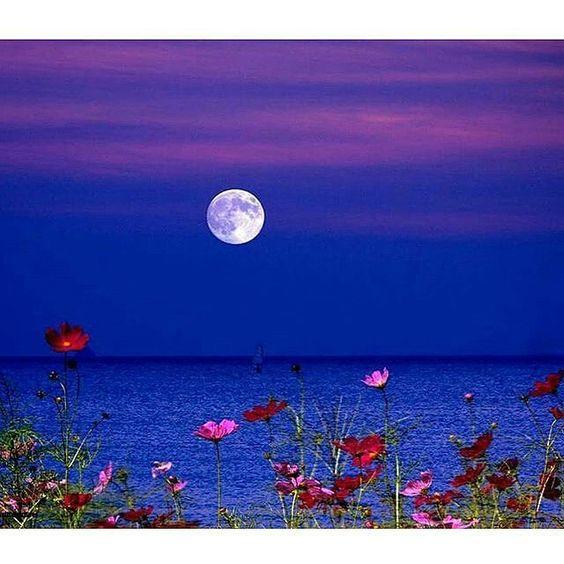 Good night!! by amarhassanglez