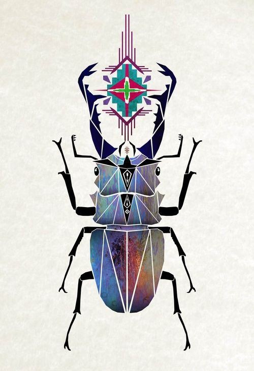 Manoou #beetle #symmetrical: