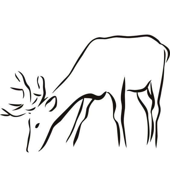 Line Drawing Of Water Animals : Animal outlines deer outline wall sticker