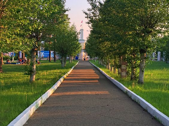 Аллея для прогулки на СибВО. Фото: Evgenia Shveda