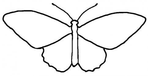 Schmetterling Ausmalbilder Kostenlos Ausmalen Ausmalbilder Tattoo Umriss