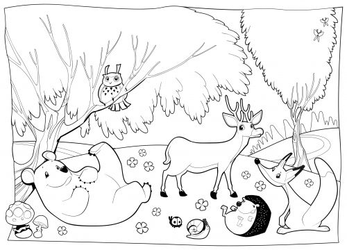 Forest Camping Animals On Woodland Endangered Gorilla Animal Coloring Page