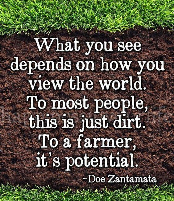 ... Quotes World Dirt Farmer