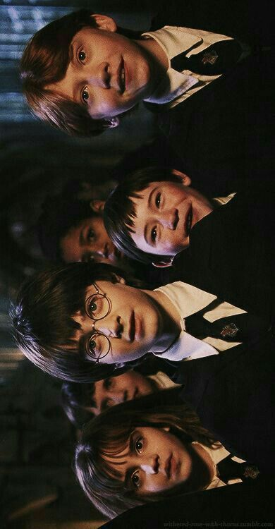 Ays Ays Harry Potter Cast Harry Potter Fanlari Harry Potter Filmleri