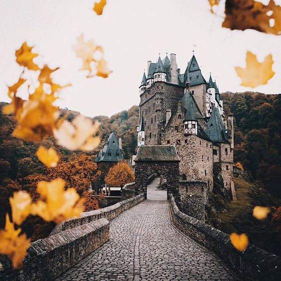 Fallen leaves  Eltz Castle, Germany | Photo by @hannes_becker  #Beautiful #Europe #fall #castles #Germany #orange #yellow #photography