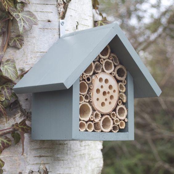 Maison d'insectes